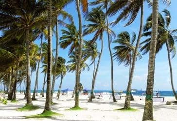 Plan a San Andrés por $1.479.000
