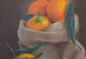 Oleo sobre lienzo bodegón naranjas por $1.100.000