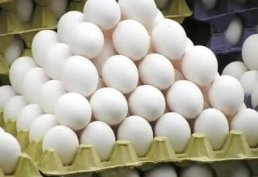 Ofertas de Pollería / Huevos