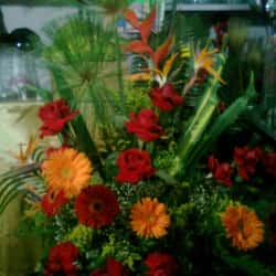 Floristería Flores y Motivos Mirandela en Bogotá