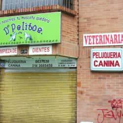 Veterinaría D Pelitos en Bogotá
