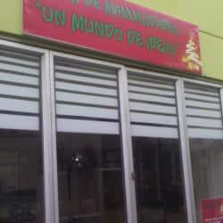 Taller de Manualidades un Mundo de Ideas en Bogotá