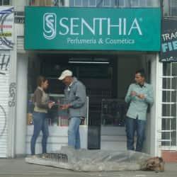Senthia Carrera 13  en Bogotá