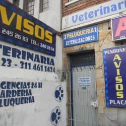 Doggos Veterinaría Calle 66 en Bogotá