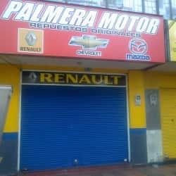 Palmera Motor en Bogotá