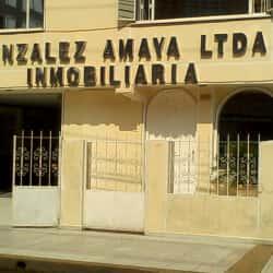 Inmobiliaria González Amaya Ltda. S.E.A. en Bogotá