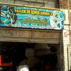 Taller de Rines Andre's en Bogotá