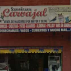 Surtiaves Cavajal en Bogotá