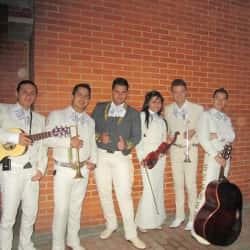 Mariachi Juvenil's Show en Bogotá