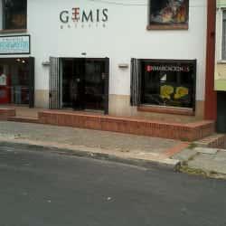 Gemis Galeria en Bogotá