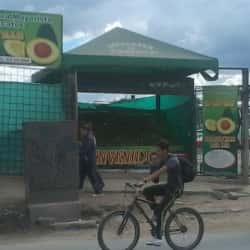 Comercializadora de Aguacates el Castill en Bogotá