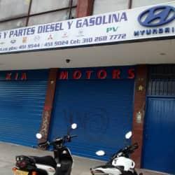 Repustos y Partes Diesel y Gasolina en Bogotá