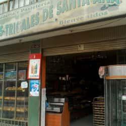 Panaderia y Pasteleria Los Trigales de Santa Ana en Bogotá