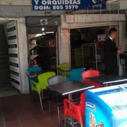 Minimarket y Orquídeas en Bogotá