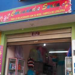 Curiosidades Sarita en Bogotá