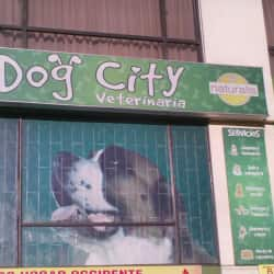 Dog City Veterinaria en Bogotá