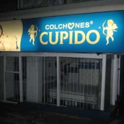 Colchones Cupido Carrera 48 Con 100 en Bogotá