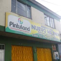 Ferrepinturas Nuevo Milenio en Bogotá