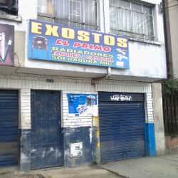 Exostos El Primo en Bogotá
