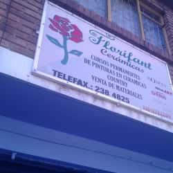 Florifant Cerámicas en Bogotá