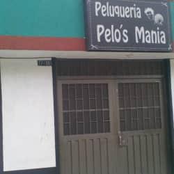 Peluquería Pelo's Manía en Bogotá