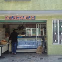 Delycamelia en Bogotá