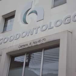 Coodontólogos Palermo en Bogotá