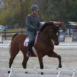 Club de Polo y Equitación San Cristóbal  en Santiago