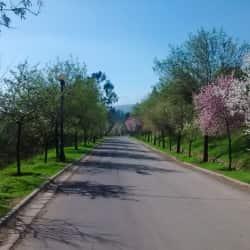 Parque Mahuida en Santiago
