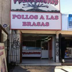 Pollo Saurio - El Olimpo en Santiago