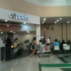 Coppelia - Jumbo Bilbao en Santiago
