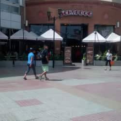 Shopdog - Mall Plaza Vespucio en Santiago