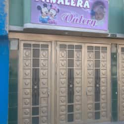 Pañalera Valery en Bogotá