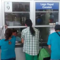 Buses Jimenez en Santiago