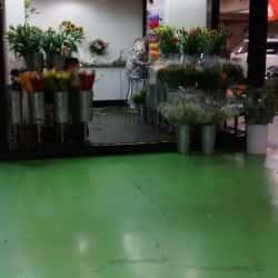 Just Flowers Portal La Dehesa en Santiago