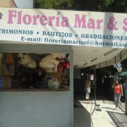Floreria Mar & Sol en Santiago