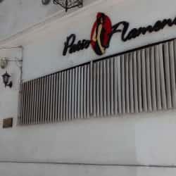 Escuela Patio Flamenco en Santiago
