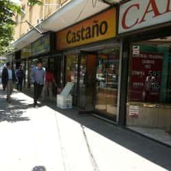 Castaño - Pedro de Valdivia / Providencia en Santiago
