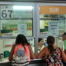 Buses Inter Sur - Terminal San Borja en Santiago