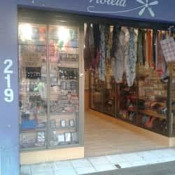Tienda Violeta en Santiago