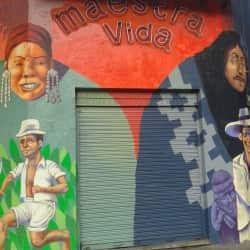 Maestra Vida en Santiago