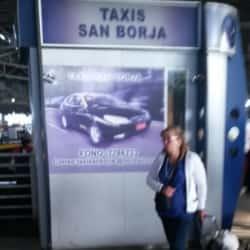Taxi San Borja en Santiago