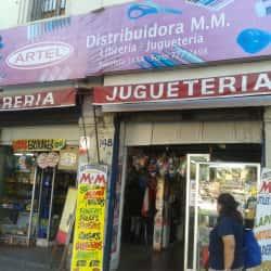 Distribuidora M.M en Santiago