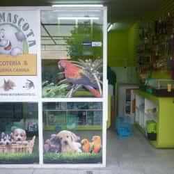 Mota Mascota en Santiago