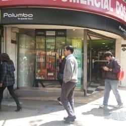 Palumbo Providencia en Santiago