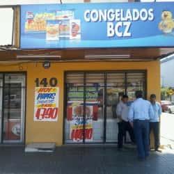 Punto frío - Congelados BCZ en Santiago