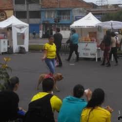Alimentos y Bebidas 052 en Bogotá