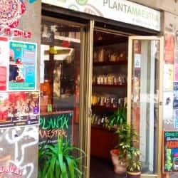 Tienda Naturista Planta Maestra - Merced en Santiago