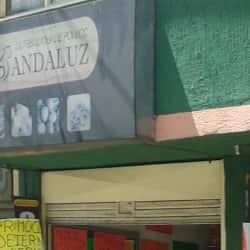 Distribuidora de Pollos Andaluz en Bogotá