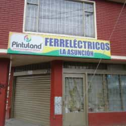 Ferre Eléctricos La Asunción en Bogotá